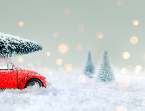 How to Prepare the Perfect Winter Car Part 2